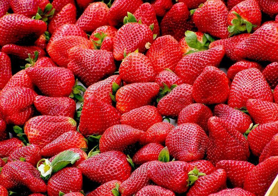 Dieta de fruta: un sano reto para este año